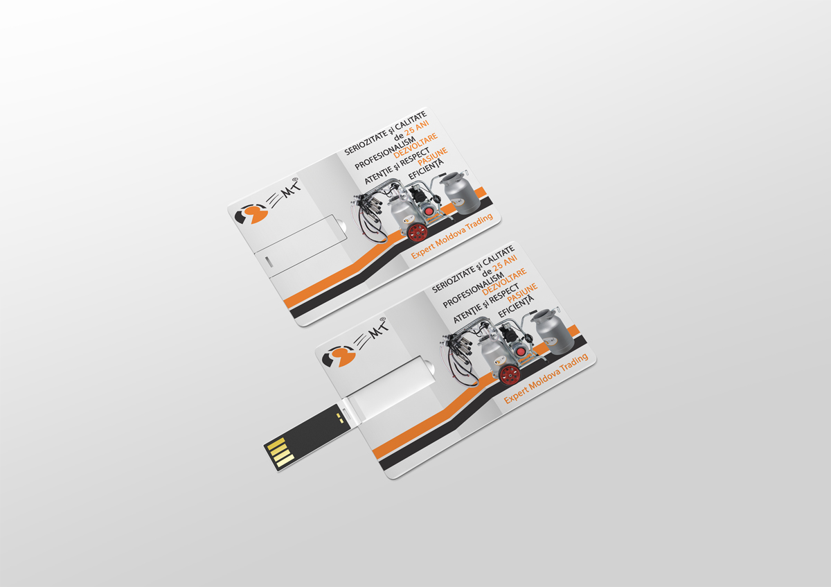 design card usb bianca ionel 1
